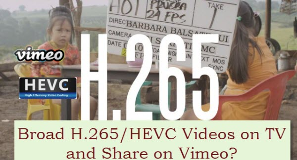 h265-hevc-video-codec