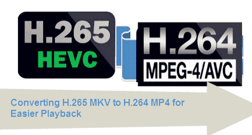 Converting H.265 MKV to H.264 MP4 For Playback